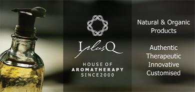 www.iplusq.com